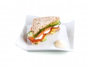 7406011_plato sandwich