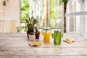 jarra-cactus-cool